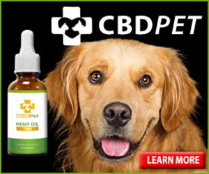 Learn More about CBDPet